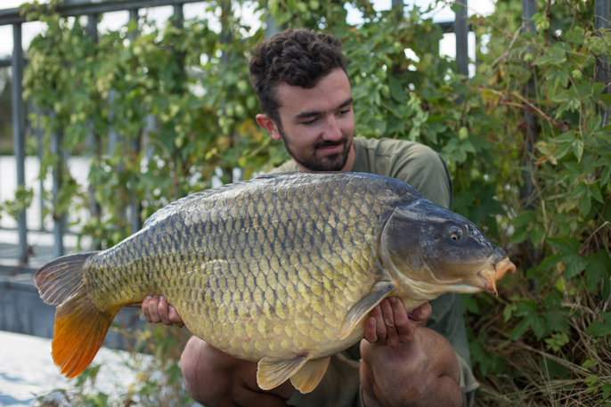Felix Pinedo Messeteam & Support bei der Carpzilla GmbH
