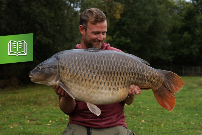 Darrell peck mit dem Chestnut Common aus dem Wellington Country Park