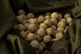 Florian Woldt angelt mit Nut2Bad Boilies von Badgers Best