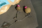 Bled Season Opening 2021 mit Quality Baits