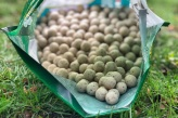 14er Scoberry Boilies von Successful Baits