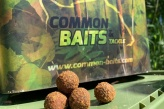 Common Baits Youth Camp 2019.