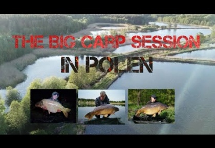 Karpfenangeln in Polen The Big Carp Session 2019 (Stadtangler.tv)